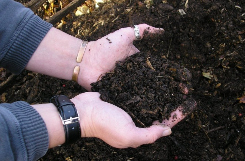 Заложение куриного помета в компост