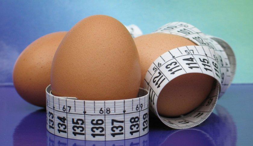 Польза куриных яиц для похудения