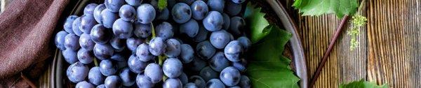 Можно ли есть виноград при сахарном диабете 2 типа