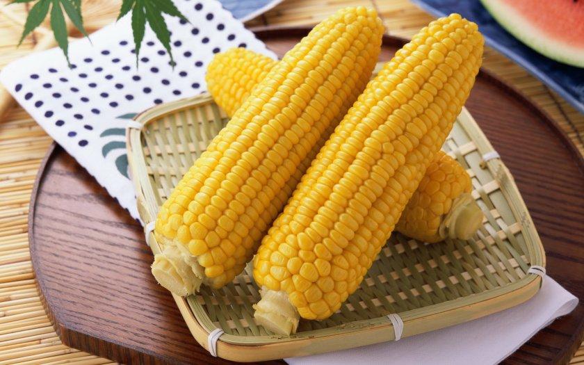Характеристинка кукурузы и происхождение