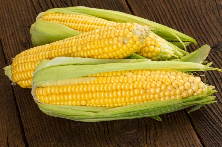 Как выбрать кукурузу в початках
