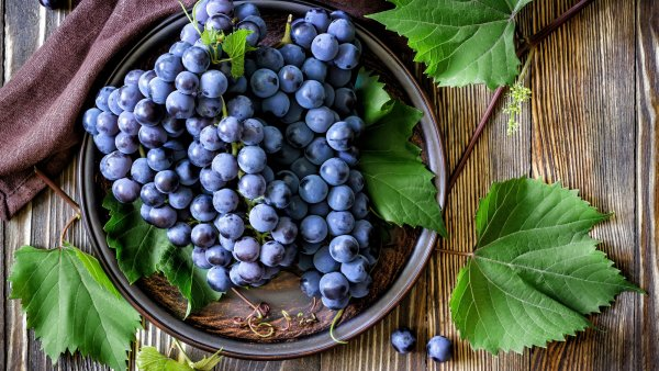 Виноград при подагре: можно или нельзя употреблять, польза и вред, особенности лечения