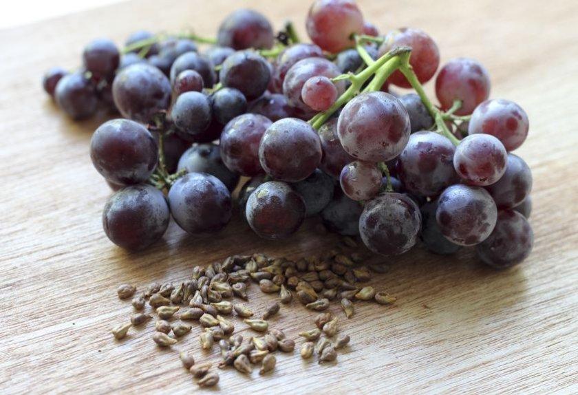 польза косточек винограда для здоровья