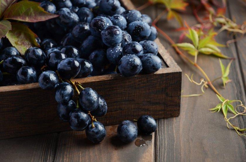 Польза чёрного винограда