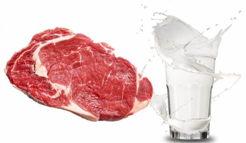Мясо и молоко