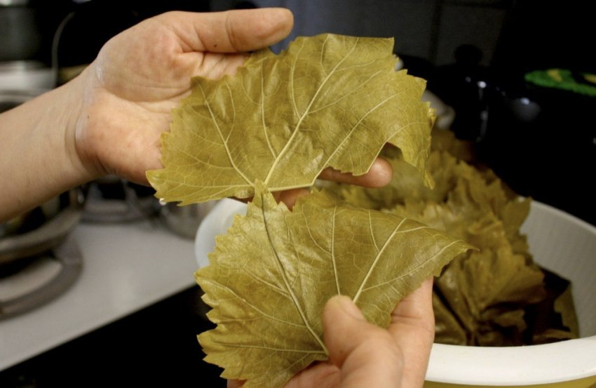 Листья для долмы