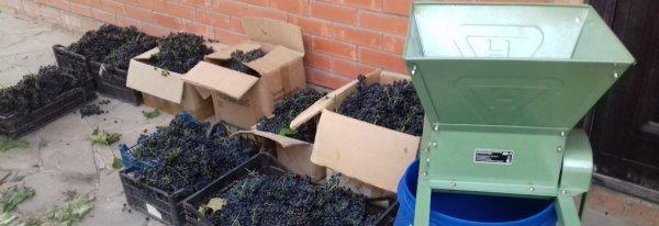 Дробилка для винограда своими руками – чертежи с гребнеотделителем