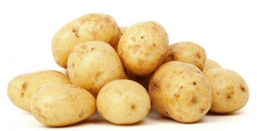 Сорт картофеля веснянка