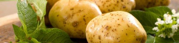 Как есть картофель и оставаться здоровым. Объясняет диетолог