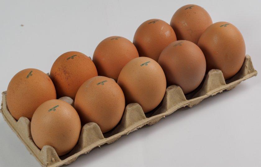 Столовое куриное яйцо