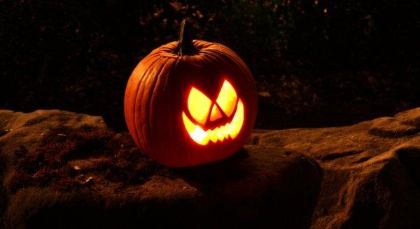 Как вырезать тыкву на Хэллоуин: пошаговая инструкция • INMYROOM FOOD