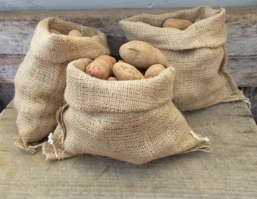 Хранение картофеля в мешках