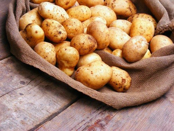 Где в квартире лучше хранить картошку