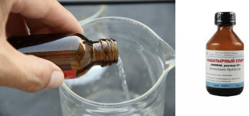 Нашатырный спирт для огурцов