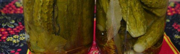 Огурцы дольками с чесноком на зиму