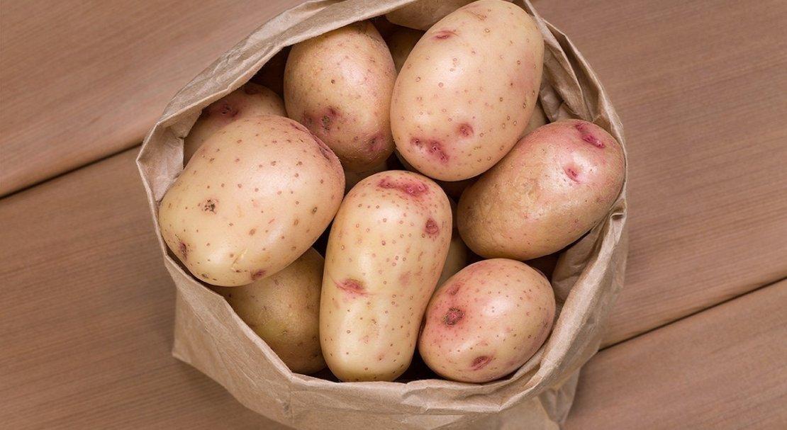 для картофель синеглазка описание сорта фото обработки