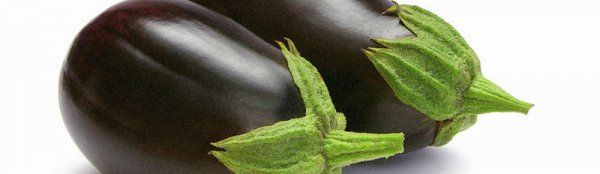 Чрный красавец баклажан для тплого климата