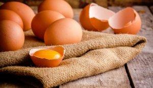 Как определить возраст курицы-несушки по гребешку и как отличить молодую от старой