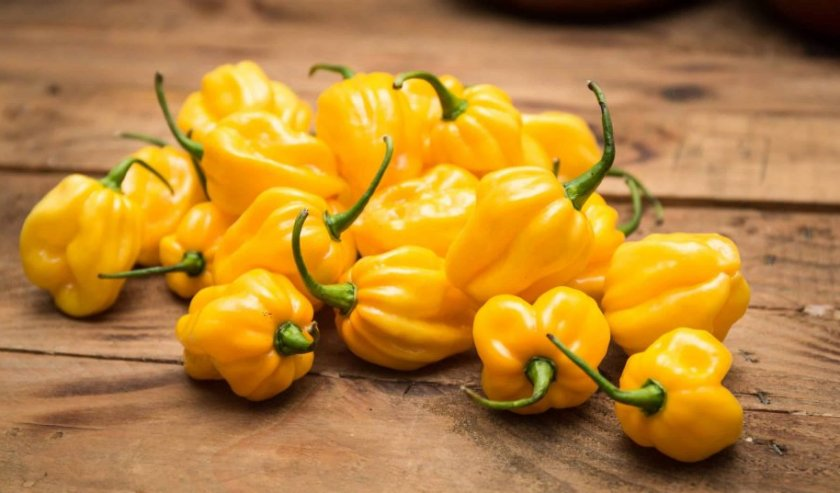 Жёлтый перец Хабанеро