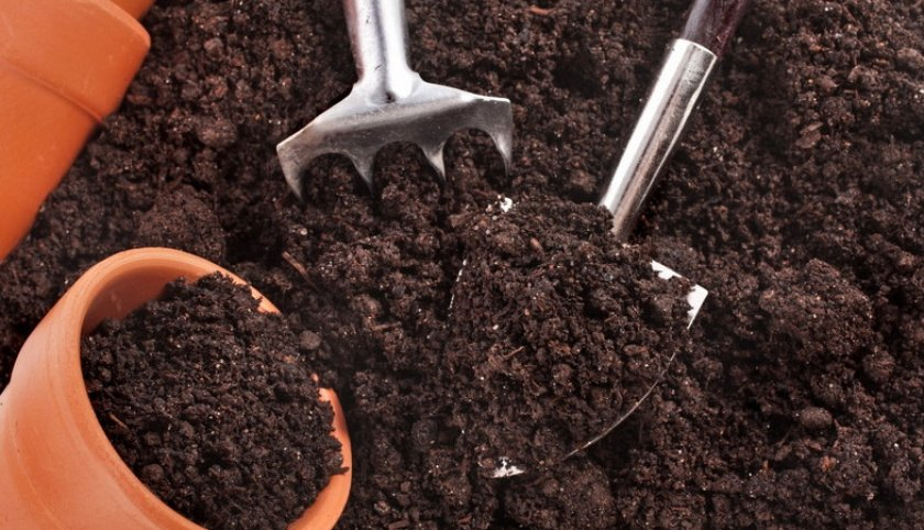 Почва для посадки