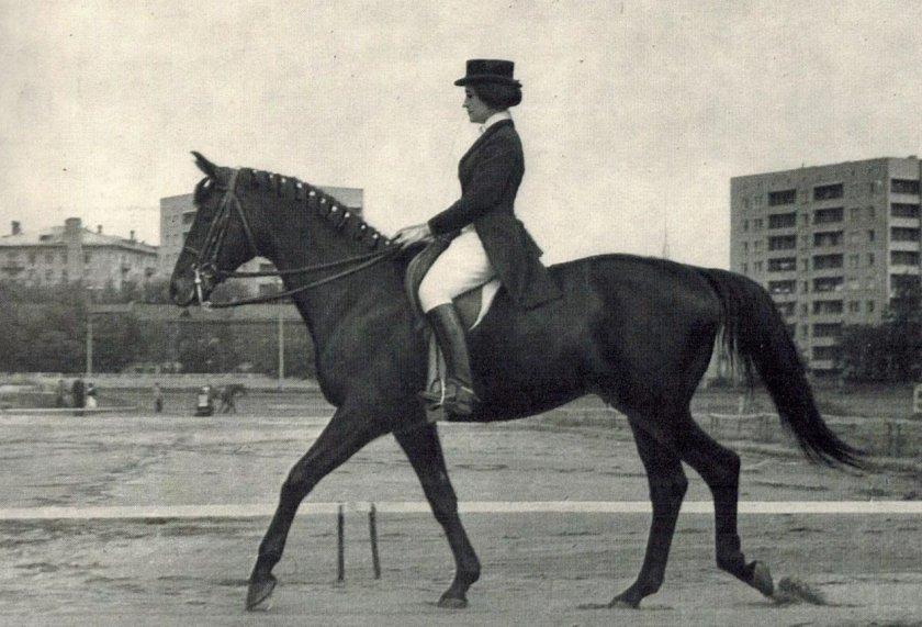 Русский конь Пепел с Еленой Петушковой