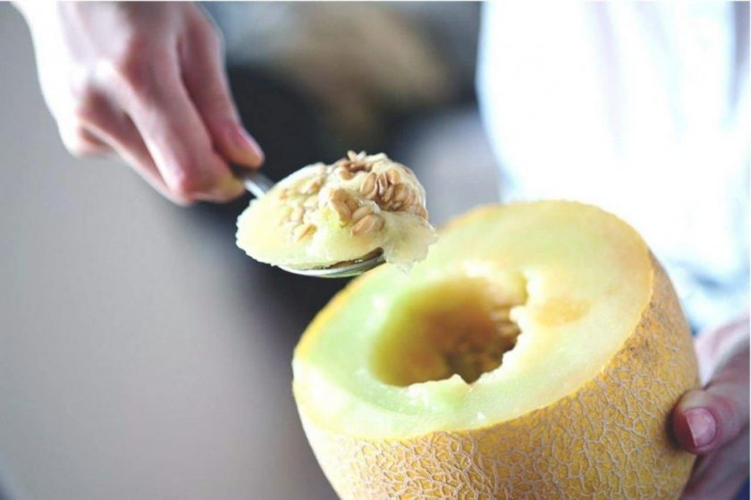 Как правильно сушить и хранить семена