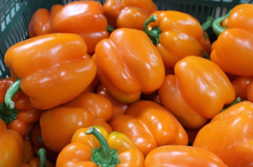 Сладкий перец Оранжевое чудо