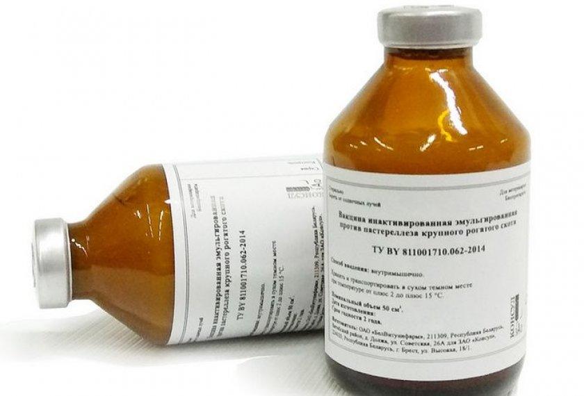 Инактивированная эмульгированная вакцина против пастереллёза крупного рогатого скота