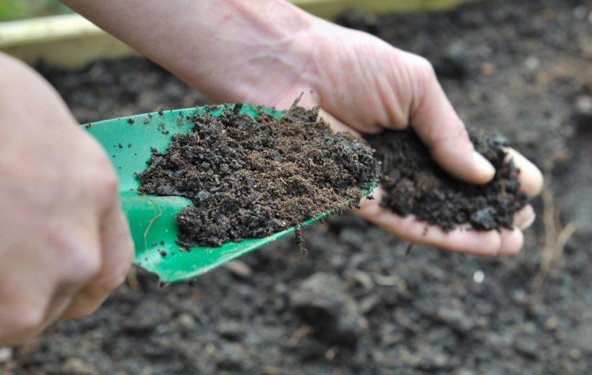 Подготовка грунта на участке