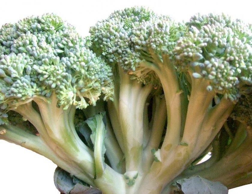 Стебельная капуста брокколи