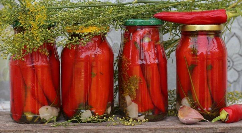 Горький перец на зиму 12 лучших пошаговых рецептов приготовления консервации