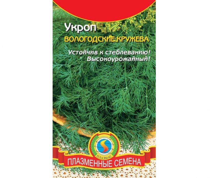 Укроп Вологодские кружева