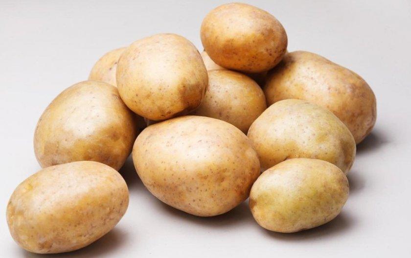 Картофель сорта Рагнеда