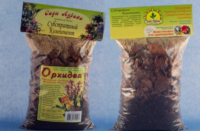 Пересадка орхидеи онцидиум