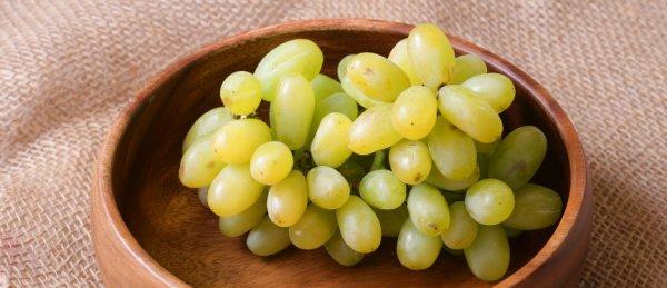 Виноград без косточки: лучшие сорта, как появился первый бессемянный виноград, особенности размножения