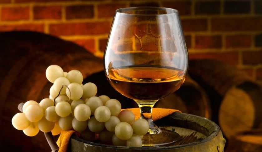 Виноград для коньяка
