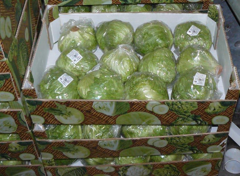 Подготовка капусты к хранению