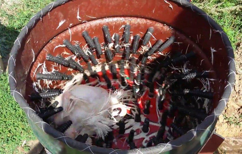 Изготовление машинки для ощипывания гусей в домашних условиях