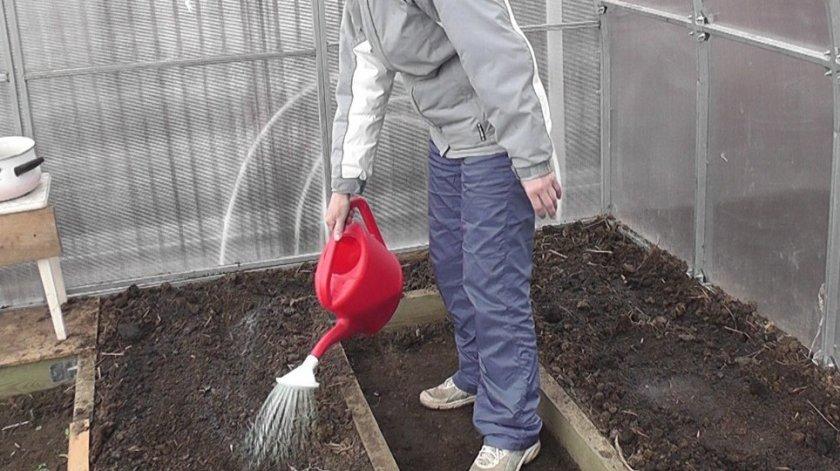 Биологическая обработка грунта