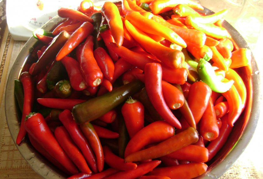 Как выбрать и подготовить острый перец для консервации