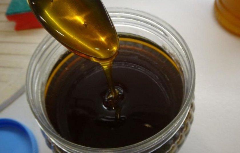 Черноклёновый мёд