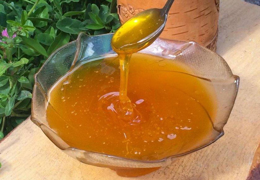 Свойства мёда для организма человека