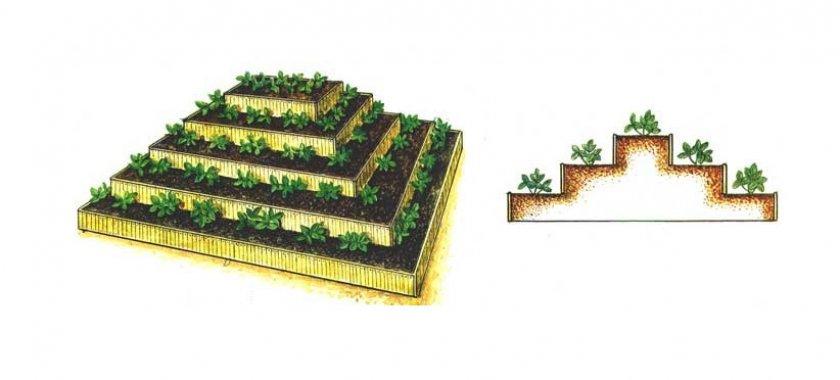Грядки в форме пирамиды