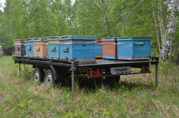 Как сделать прицеп для перевозки пчел