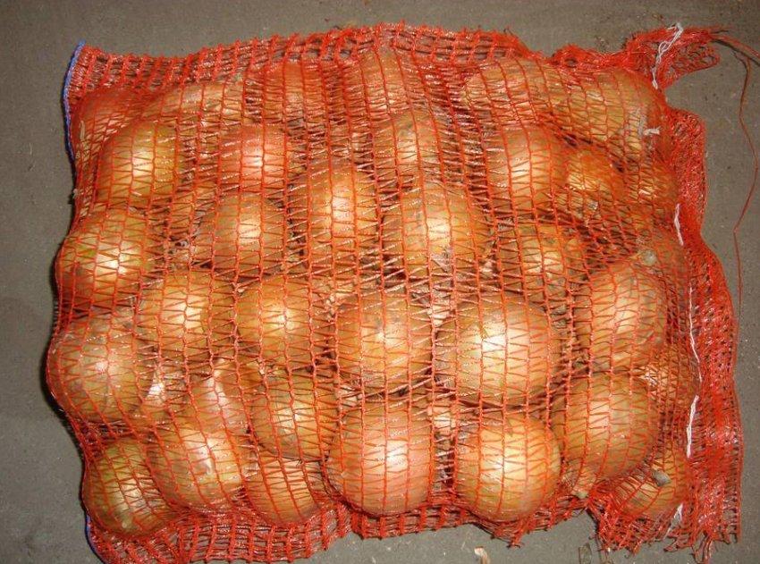 Репчатый лук в сетках из полиэтилена