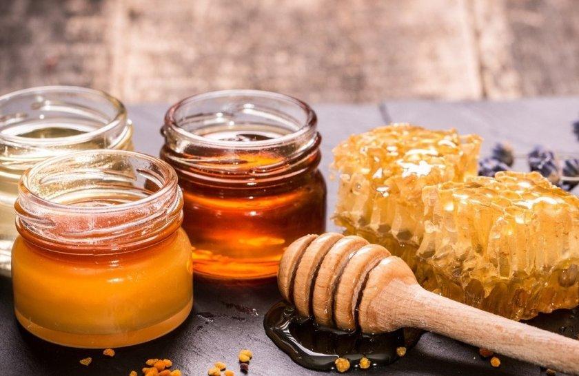Как получается мед: процесс добычи, свойства