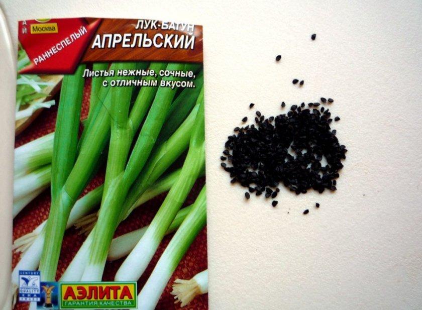Семена лука-батун