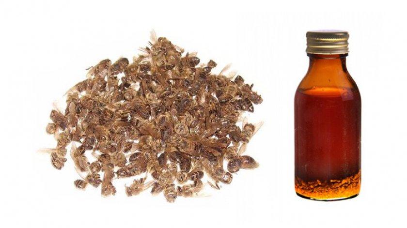 Лечение настойкой из пчелиного подмора