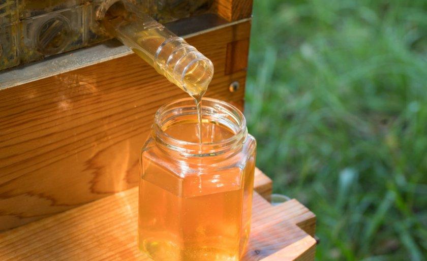 Собирание мёда