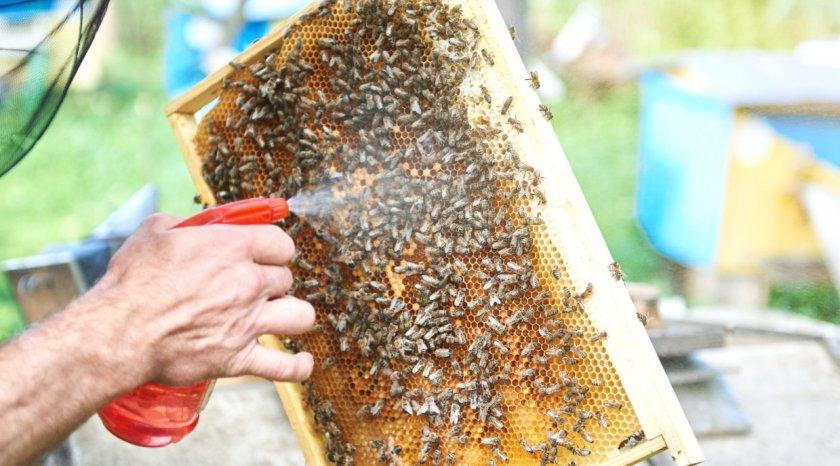 Обработка пчёл Бипином